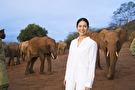 感動地球スペシャル みなしごゾウを守れ 松下奈緒ケニア感動物語