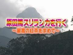 原田篤 スリランカを行く!