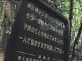 心霊投稿ビデオ 私たちは呪われた ~山梨県 青木ヶ原樹海~
