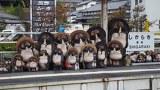 鉄路の旅 陶芸の里 信楽高原鉄道の旅