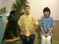 Dr.イシノの動物マッサージ