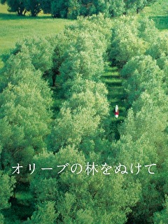オリーブの林をぬけて