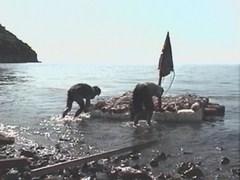 電波少年 Rマニアスワンの旅 電波少年的無人島脱出3