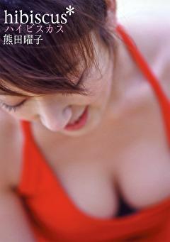 hibiscus ハイビスカス 熊田曜子
