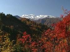 日本百景 美しき日本 日本の尾根と植物の楽園